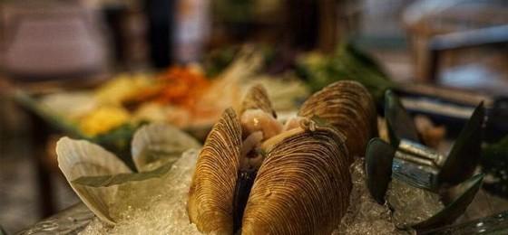 海鲜火锅加盟费用